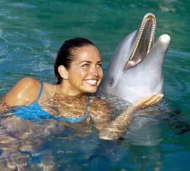 Cayo Ensenachos Dolphinarium
